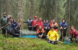 Einsatz im Bergwald