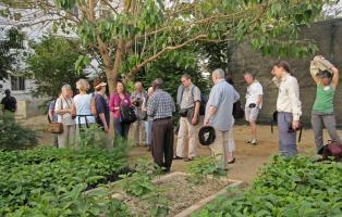 Besuch einer Baumschule in Afrika