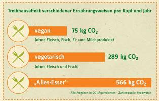 Grafik zum Treibhauseffekt verschiedener Ernährungsweisen pro Kopf und Jahr