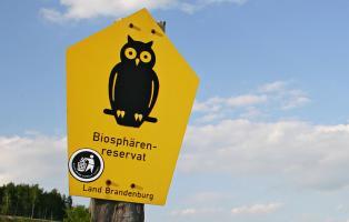 Biosphärenreservat-Schild (gelb mit schwarzer Eule), auf dem ein Anti-Nazi-Aufkleber (Hakenkreuz in die Abfalltonne) klebt