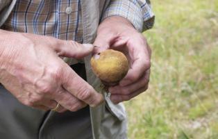 Nachhaltige Landwirtschaft,
