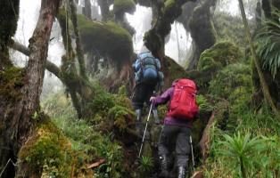 Marsch durch den Kilembre Trail